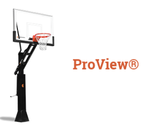 how to buy proview1 300x256 - how-to-buy-proview1